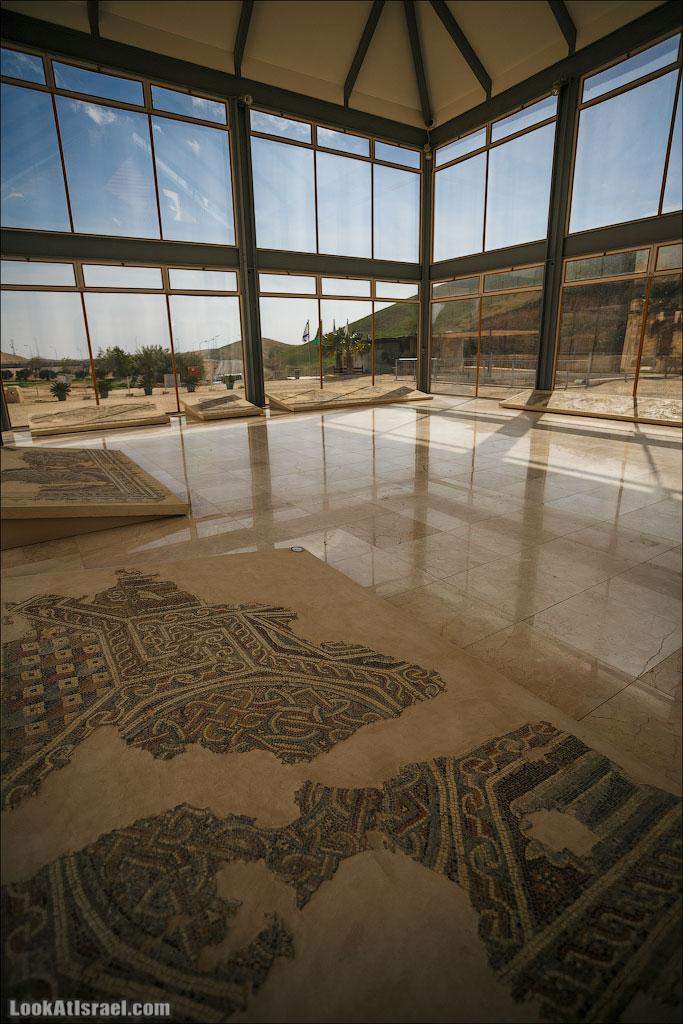 Мозаики от «Доброго самаритянина» (israel  путешествия иудея и самария и интересно и полезно выставки музеи фестивали  20130215 good samaritan mosaic 017 5D3 8387)
