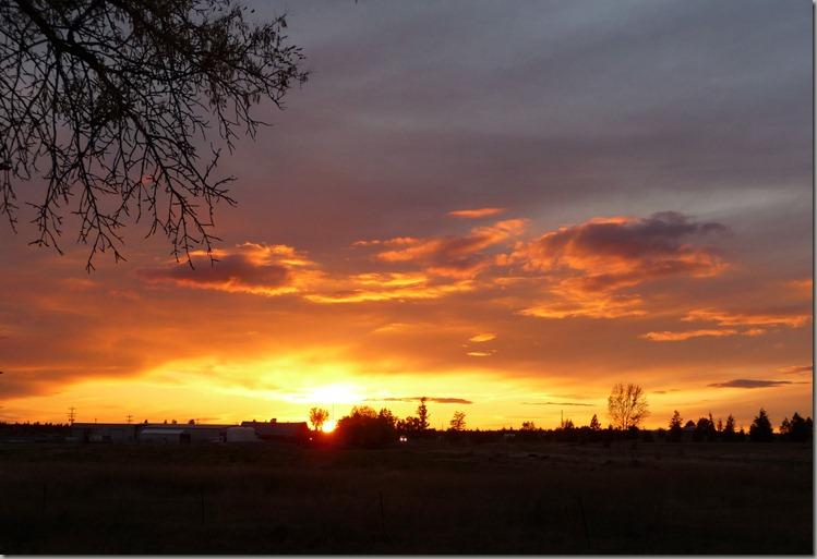 sunsets 016