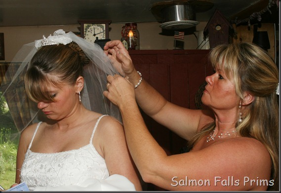 Wedding Photos 259