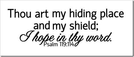 Psalm 119_114