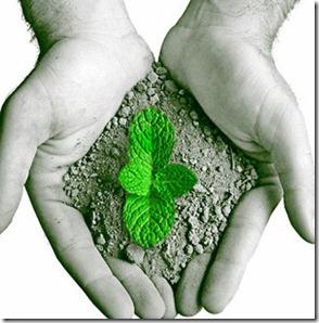 preservacao-do-meio-ambiente