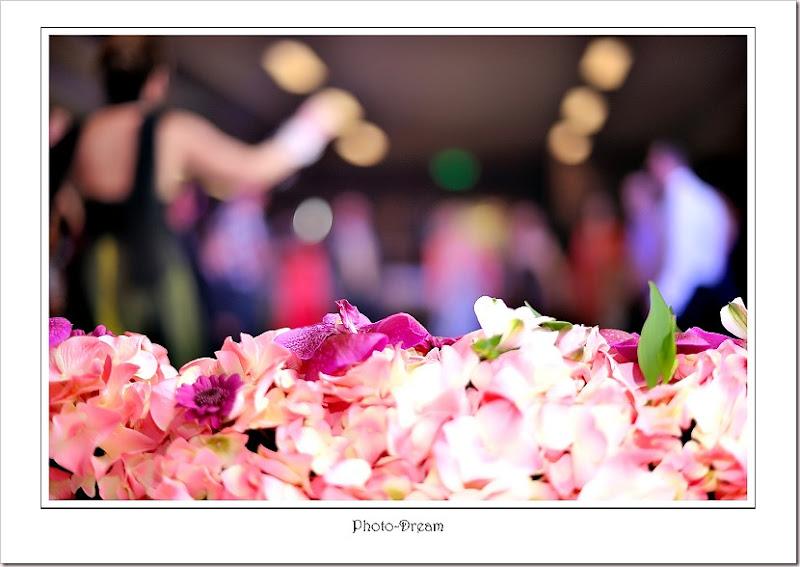 Photo-Dream__305