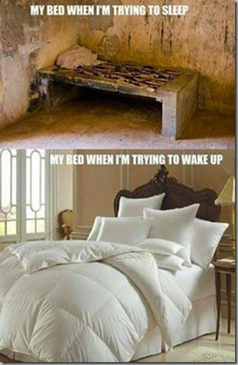 bed - sleep - wake