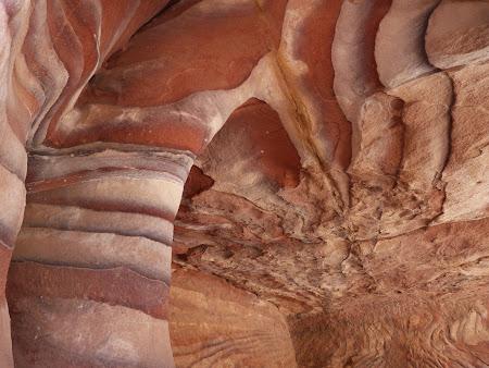 Culori in Petra