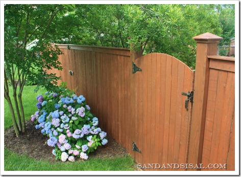 Copper Capped Fence with Hydrangeas (800x566)