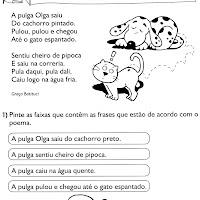 texto - A pulga Olga.jpg