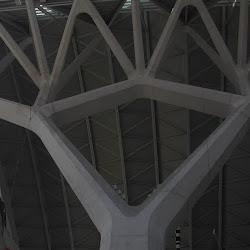 40.- Calatrava. Museo de Ciencias