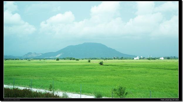 Bukit Hijau14