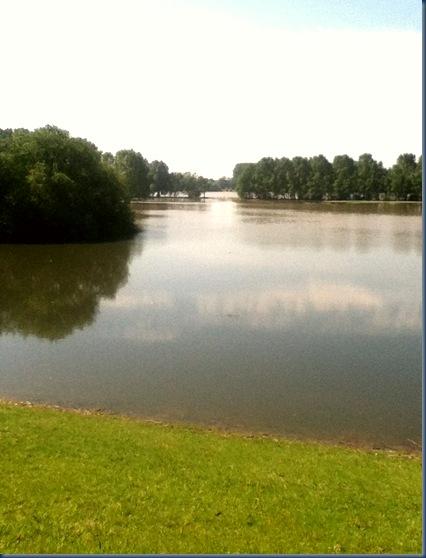Rhein Juni 2013