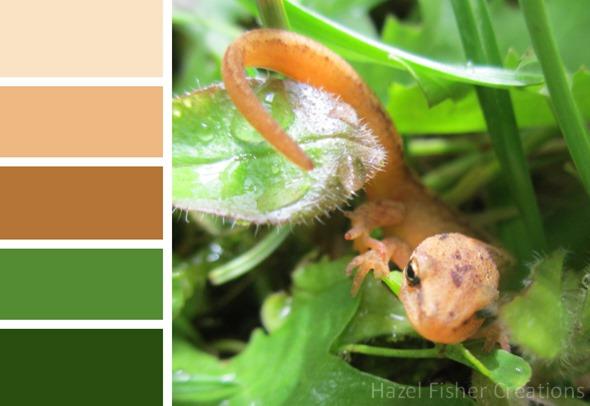 018 colour palette newt