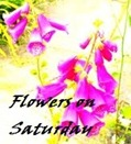 flowers_on_Saturday