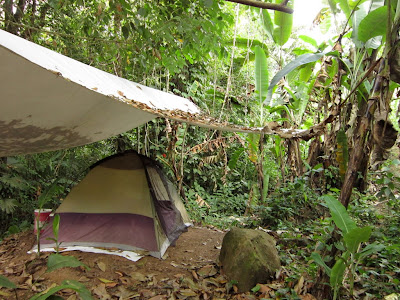 my hangout for a week or two, at night kinkajous and possums would hang out here too (which freaked me out)