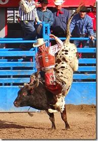 Tucson Rodeo 085
