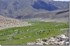 06-29 vers Ulaangoom 018 800X