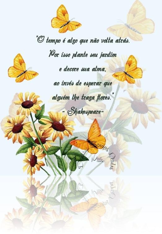 conselhos21