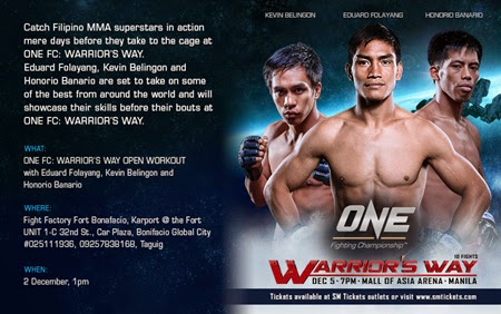 ONE FC Warrior's Way