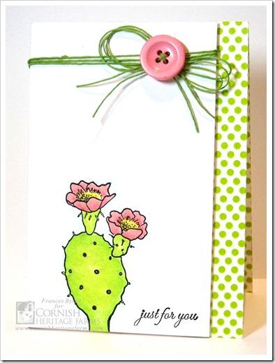 CHF34-Cactus-wm
