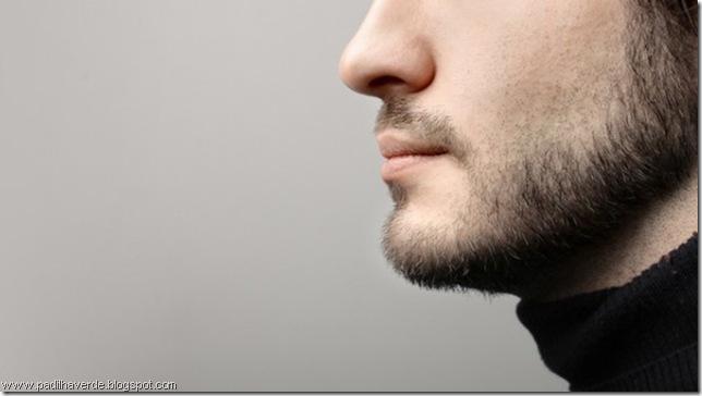barba-600x337