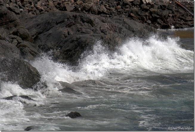 bølgeskvulp