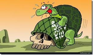 cosasdivertidas tortugas con ganchillo (4)