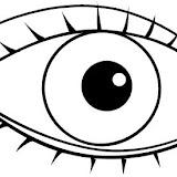 Partes del cuerpo: ojo