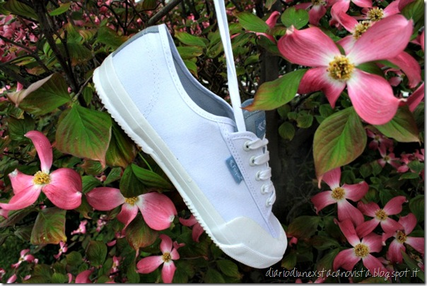 scarpe tela feiyue