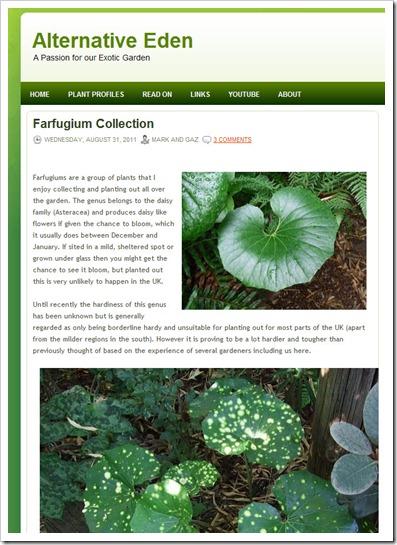 110831_alt_eden_farfugium