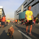 Pet Express Doggie Run 2012 Philippines. Jpg (140).JPG