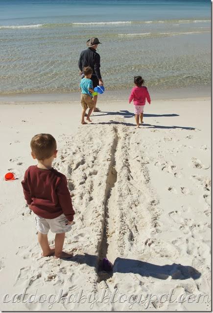 2013-11-09 beach (442)