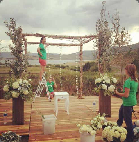 behind the scenes 574506_10150975244311123_1332563353_n plum sage flowers