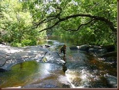 Goodman County Park WI