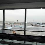 aircanada fleet at pearson airport in Chiba, Tokyo, Japan