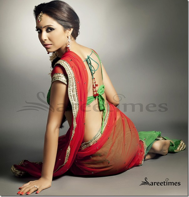Net_Saree (2)