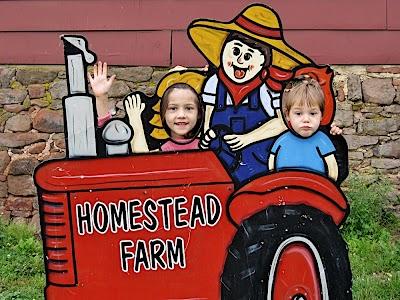Down Home Fun at Homestead Farm