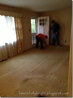 Before-Carpet