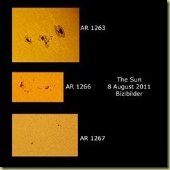 8 August 2011 sunspots