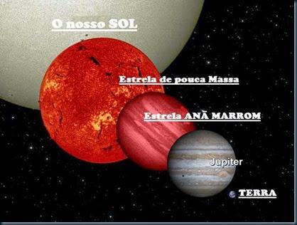 anan-marrom