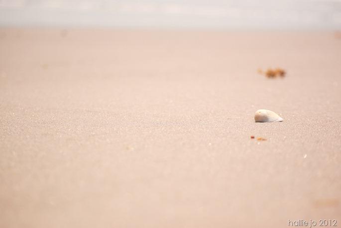 Beach60