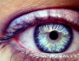 wysiwyg eye