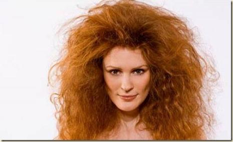 Remedios Caseros para el cabello Frizz1