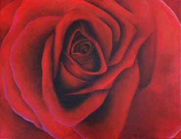 red rose2 teresa dye