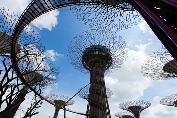 gardens by the bay by grant associates and wilkinson eyre architects 7