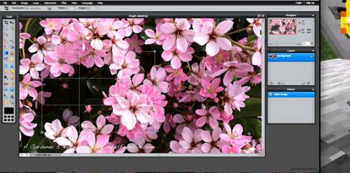 Pixlr screen2