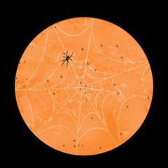 halloween oransj spindelvev topper