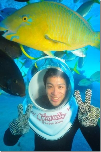 seawalker-photogenic-fish-1
