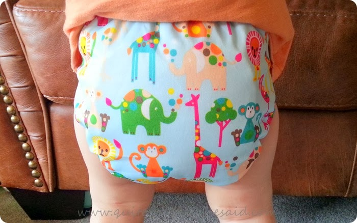 freeva reusable nappy
