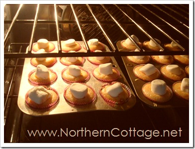 cupcakes @ NorthernCottage.net