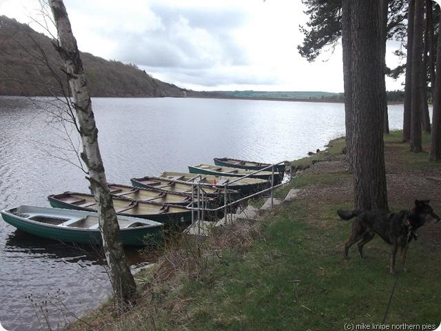 reservoir boats