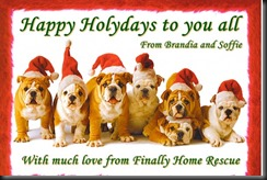 Doggies say: Merry Christmas!