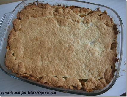 Prăjitură rustică cu dovleac - coacem 30min